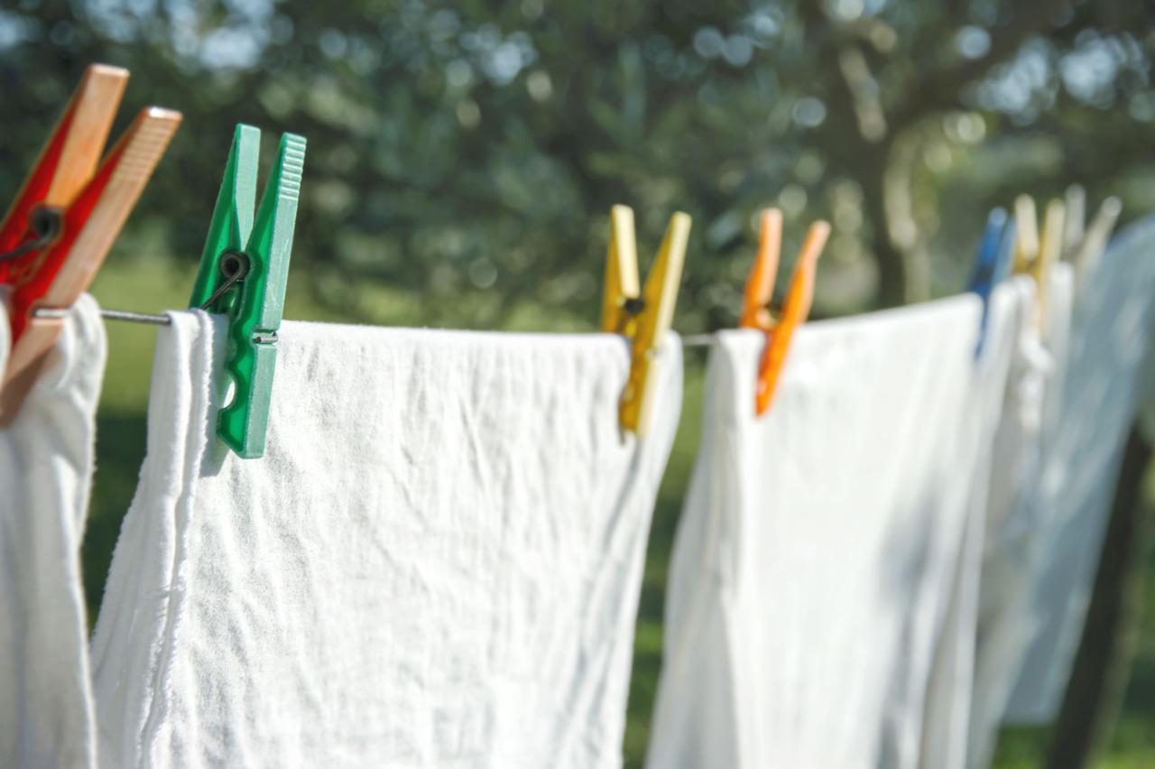 画像: ロープを張って乾かす