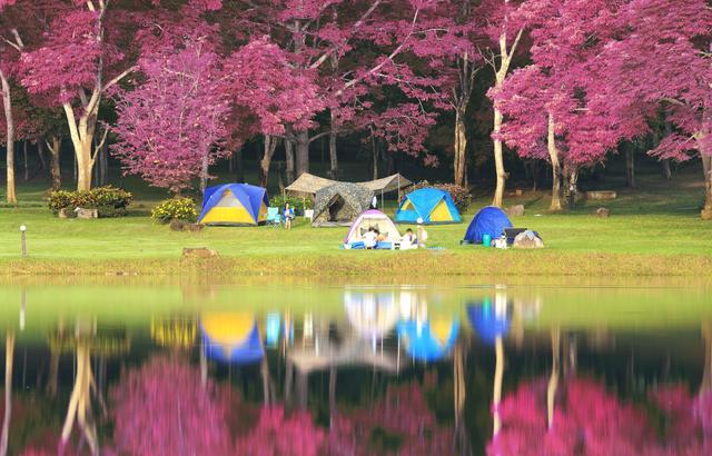 画像: 雨の日キャンプ対策! タープを準備しよう