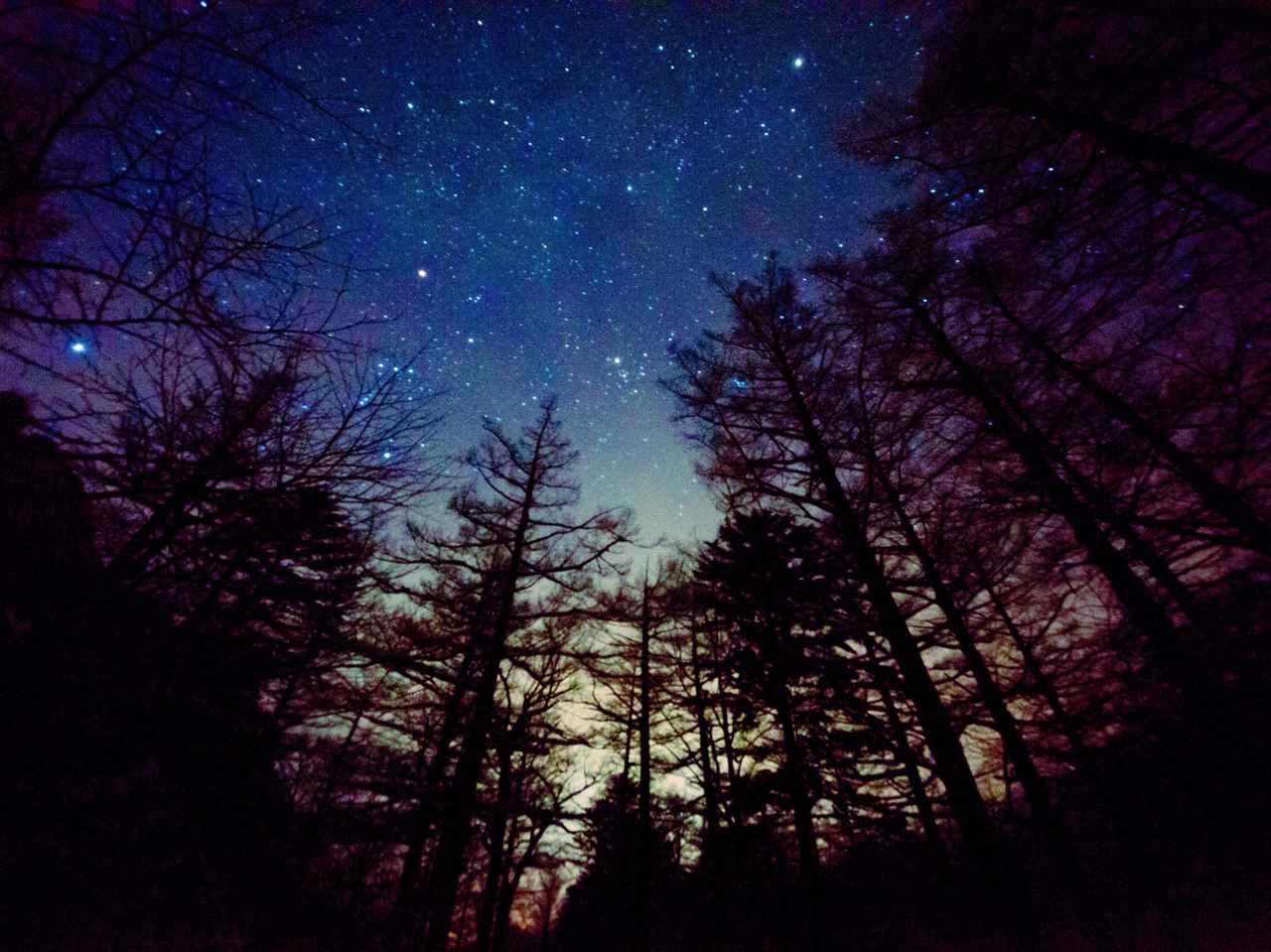 画像: 阿智村 せいなの森キャンプ場など! 星が綺麗に見えるおすすめキャンプ場で天体観測をしてみよう
