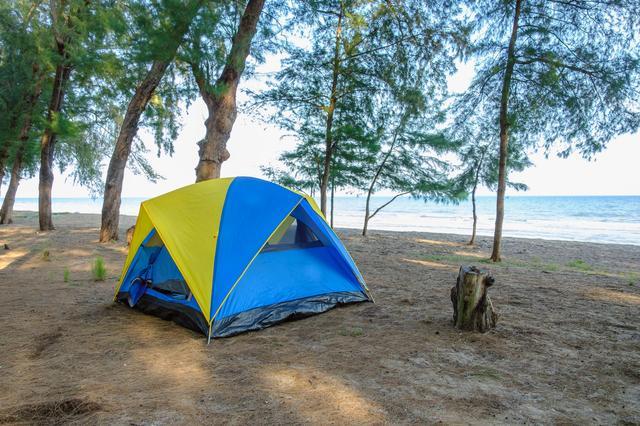画像: 弁天浜や高嶋海水浴場で海キャンプ! 海水浴とキャンプを同時に楽しめるのは夏ならでは
