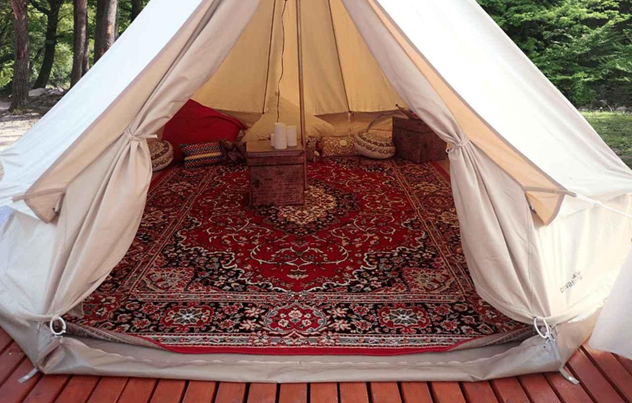 画像: nuts-camp.com