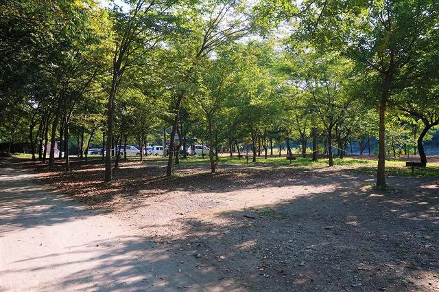 画像: www.nagatoro-camp.com