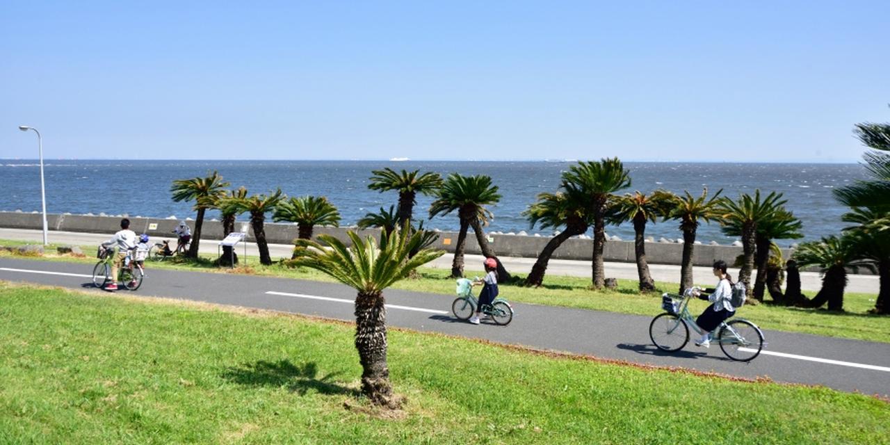 画像: 若洲海浜公園&江東区立若洲公園|海上公園なび