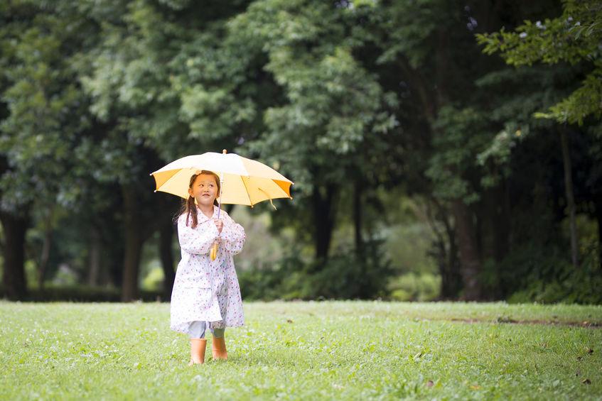 画像: 驚くほど軽くてかさばらない折りたたみ傘「トラベルアンブレラ」