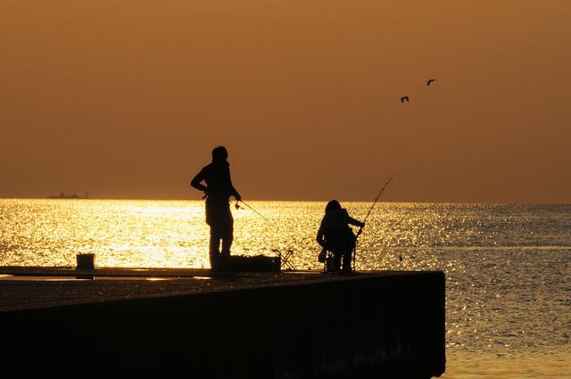画像: 子どもや初心者も安心! 柵がある釣り場をリサーチ