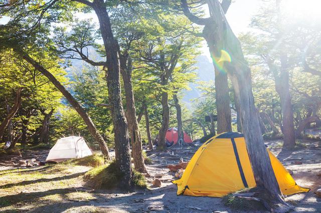 画像: 観光で京都に行くならキャンプもプラス 一気に多くの体験をすれば子どもの経験や教育にもGOOD!