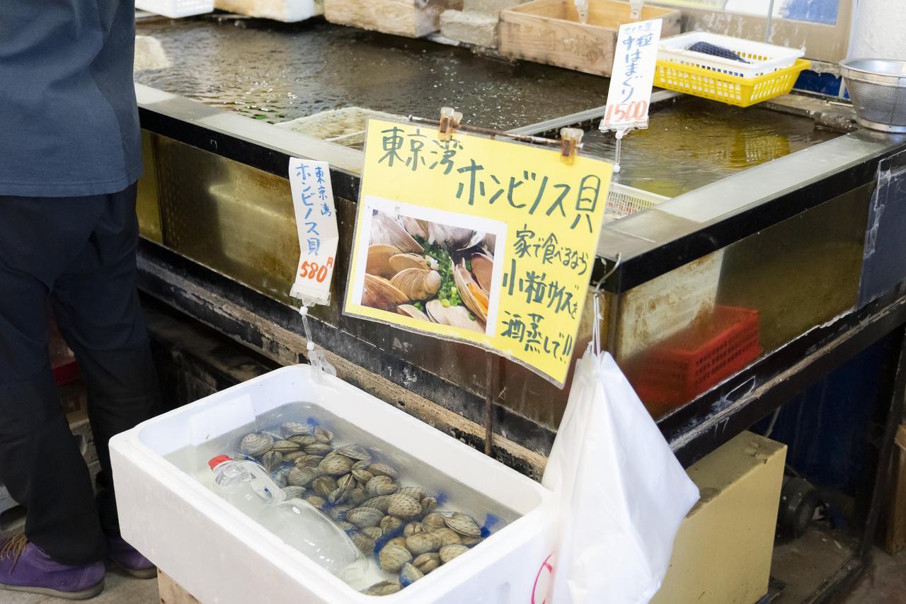 画像1: キャンプ前の腹ごしらえ! 「活き活き家 八千代店」でアジフライ定食や刺し身など海鮮ランチ!