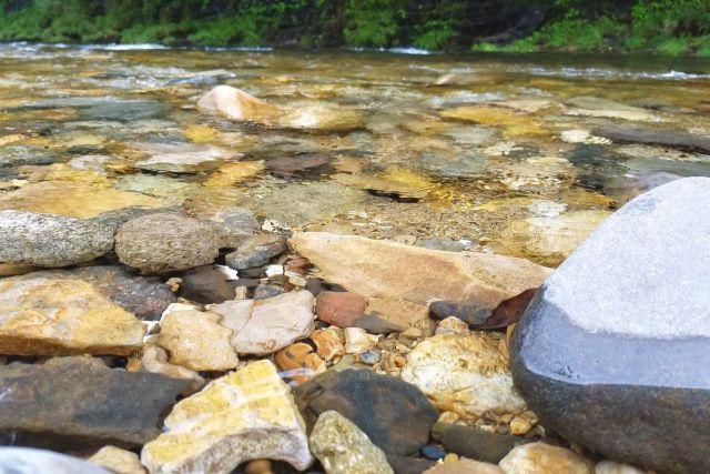 画像: 編集部撮影・水がとっっっても綺麗