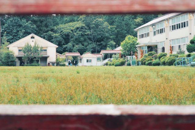 画像: 編集部撮影・木々に囲まれた学校