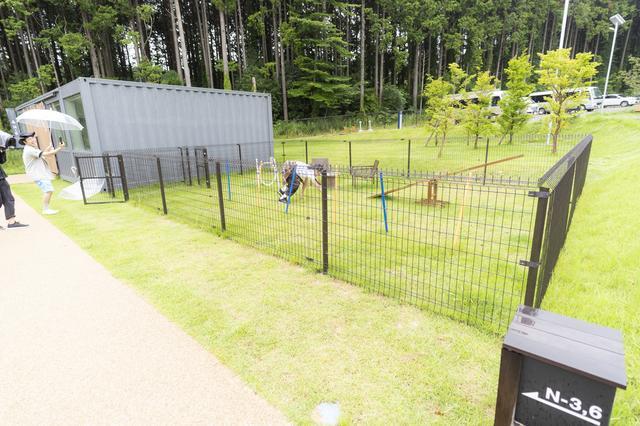 画像4: 雨の中、卓球!? 富士御殿場の「藤乃煌」を井上&狩野コンビで全力リポート
