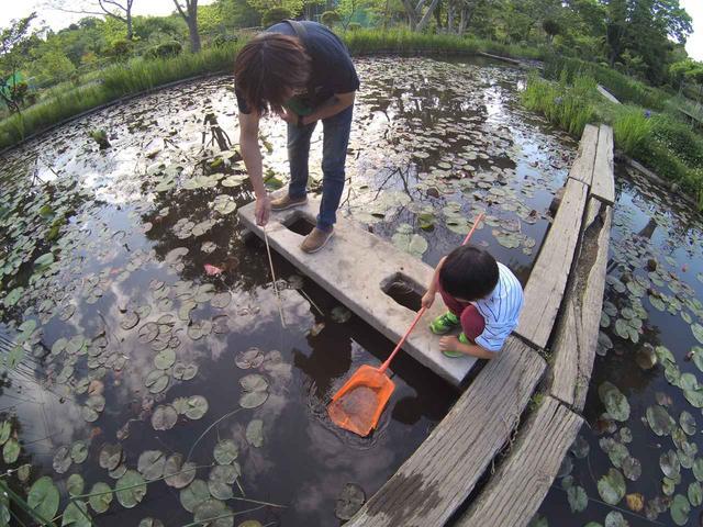 画像: 【ファミリー必見!】キャンプ場で親子めいっぱい遊ぶ方法をご紹介! - ハピキャン(HAPPY CAMPER)
