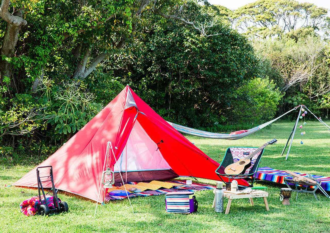 画像: 画像出典:Tent-Mark Designs(リニューアル前の旧PANDA) www.tent-mark.com