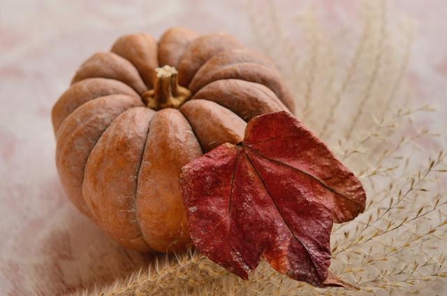 画像: ゴツゴツした皮が特徴的な日本かぼちゃ