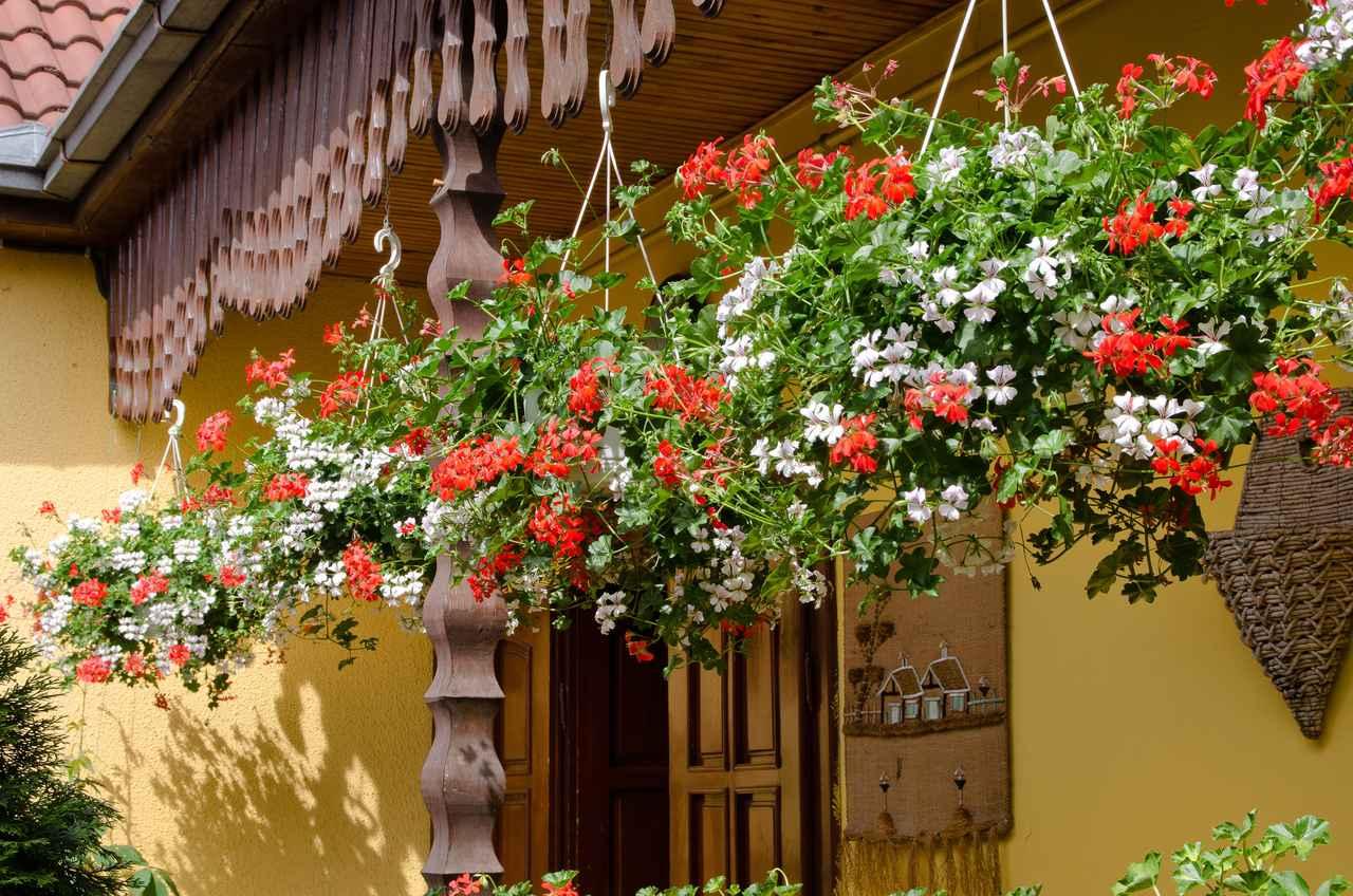 画像: 簡単DIYでお庭をおしゃれに見せる! ガーデニングには手作りハンギングポットがおすすめ