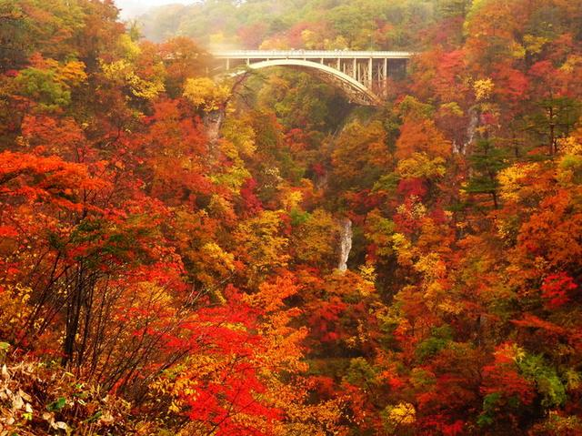 画像: 鳴子峡(宮城)/100mの深さのV字渓谷が赤く色づく