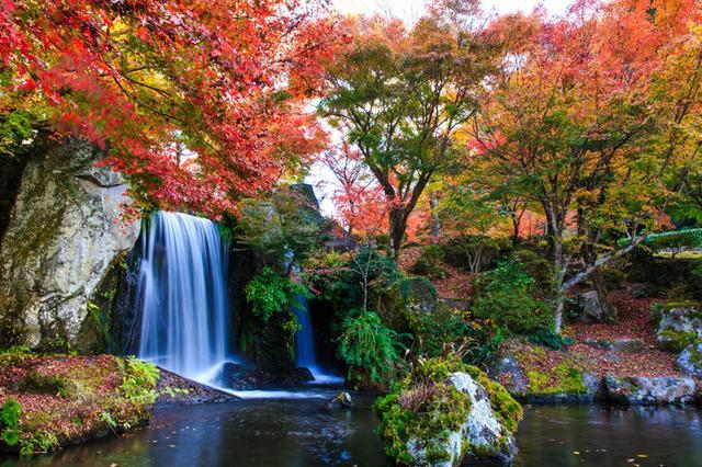 画像: 日本庭園の中に耶馬溪のダイナミックな自然美が再現された「溪石園」