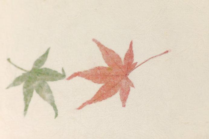 画像: 国の伝統工芸品にいちはやく指定された因州和紙 ※画像はイメージ
