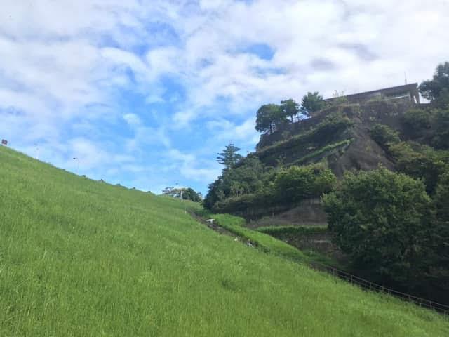 画像: 中腹ぐらいまで登ってダムを見上げたところ。奥の方の白い点が子ども達。 大人はゆるい坂道をひたすら登り、子ども達は途中から急勾配の階段を登って行った・筆者撮影