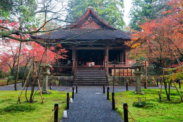 画像: 京都大原「三千院」。紅葉時期の「往生極楽院」