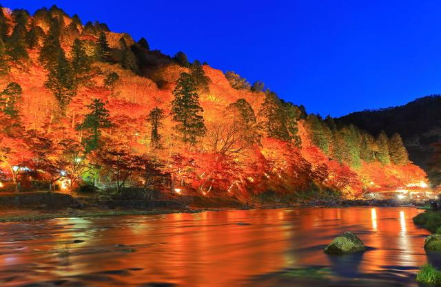 画像: ライトアップされた香嵐渓も必見!