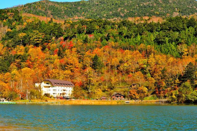 画像: 秋の湖畔では、色づく樹々を眺めてリラックスしたい