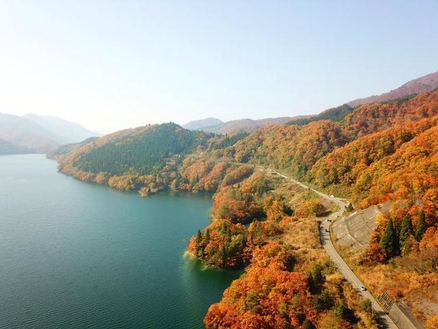 画像: 鮮やかな紅葉を湖面に映す、深いグリーンの九頭竜湖