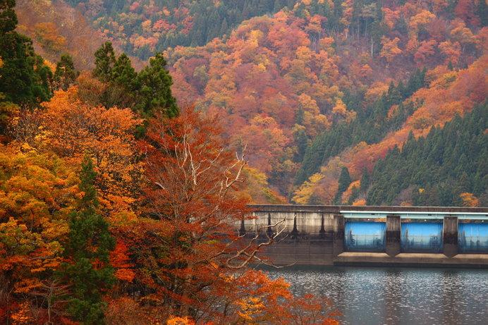 画像: 高さ128m、堤頂長355mという巨大な九頭竜ダムも見ごたえあり