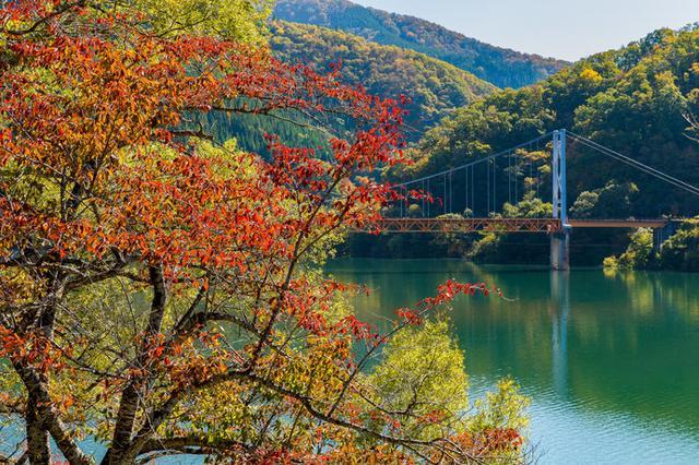 画像: 瀬戸大橋のモデルとなったことでも知られる「夢のかけはし」