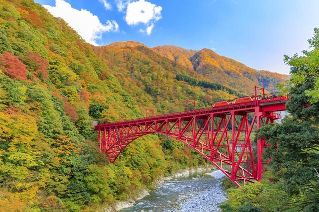 画像: 紅葉とエメラルドグリーンの川のコントラストは絶景!