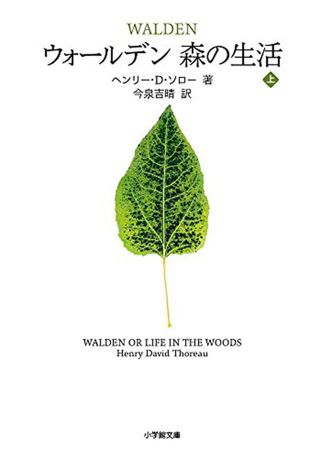画像: 本×音楽×キャンプの注目イベント「森の生活」が11月16-17日に茨城県で開催!