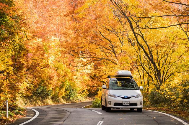 画像: 関東圏の自然を楽しもう! アクセスの良い奥多摩は、子供にとっても最高の1日ドライブコース!