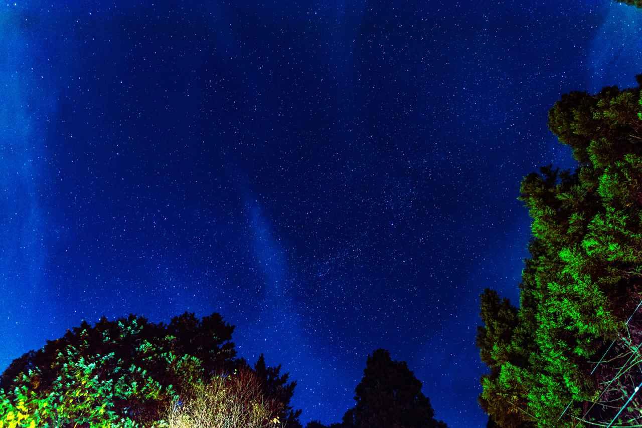 画像: 選んだのは、あきる野市「大岳キャンプ場」