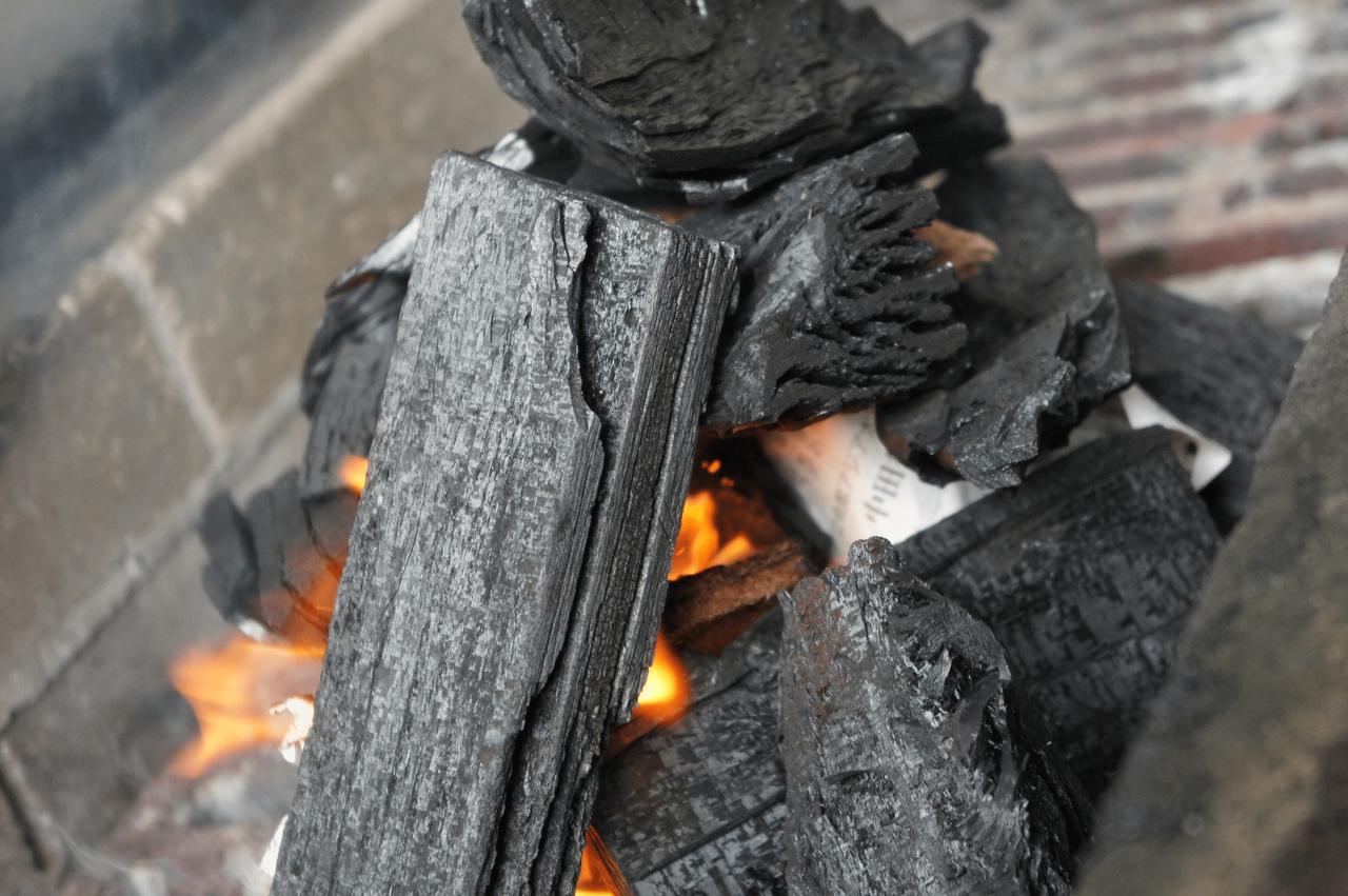 画像: とくにこだわりがないなら黒炭や成形炭・オガ炭がオススメ