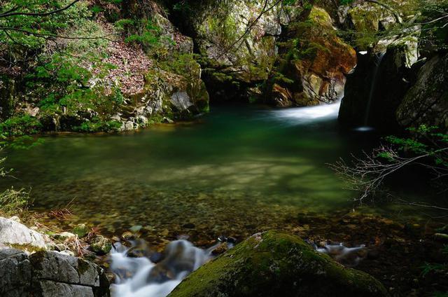 画像: 清流、苔むす岩々、色づく木々……と、魅力いっぱいの「小鹿渓」