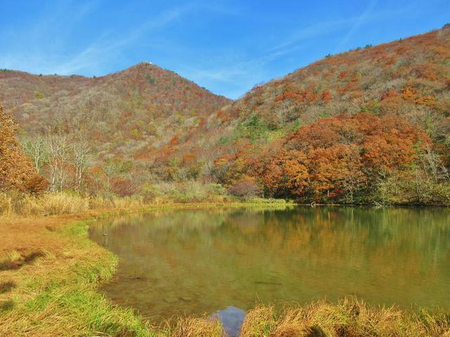 画像: 見事な紅葉が広がる「三瓶山」の室内池の景観