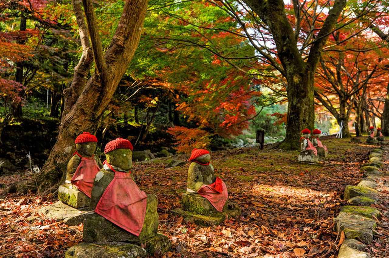 画像: 秋の「大寧寺(たいねいじ)」の一風景