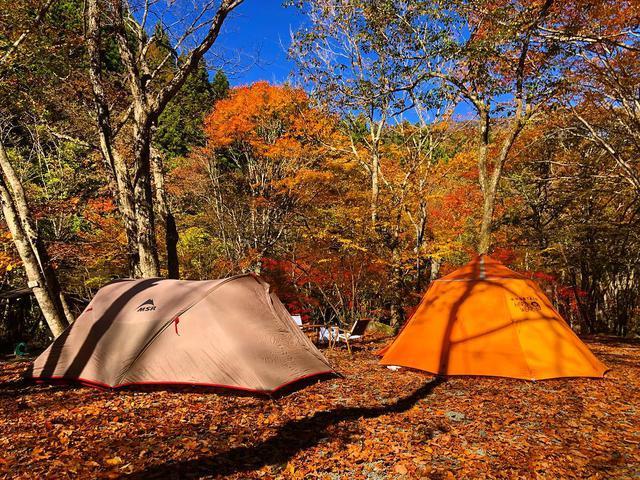 """画像1: 黒縁眼鏡 on Instagram: """". . キャンプ好きです。 . #道志村 #山伏オートキャンプ場 #MSR #Velo #MSRVelo #ベロ #mountainhardwear #hoopster #フープスター #キャンプ #camp #camping #紅葉 #紅葉キャンプ #ちょっと早い…"""" www.instagram.com"""