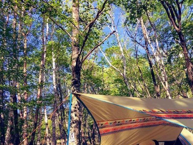 画像: 山梨県で涼しいキャンプ♪ 標高1467mの「みずがき山森の農園キャンプ場」レポート - ハピキャン(HAPPY CAMPER)