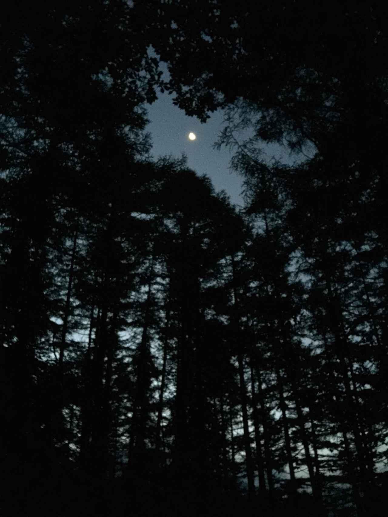 画像: 暗い山道のイメージ画像
