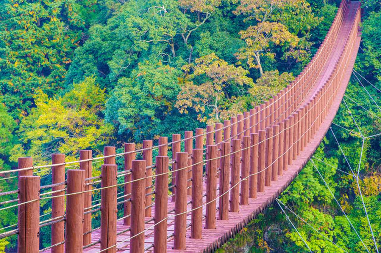 画像: 紅葉の立神峡(熊本県)