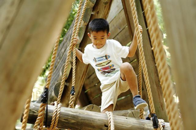 画像: 思いっきり体を動かせる♪関東近郊アスレチック特集 - ハピキャン(HAPPY CAMPER)