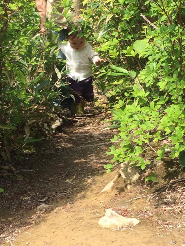 画像: 筆者撮影 険しい道でもどんどん進んでいく娘