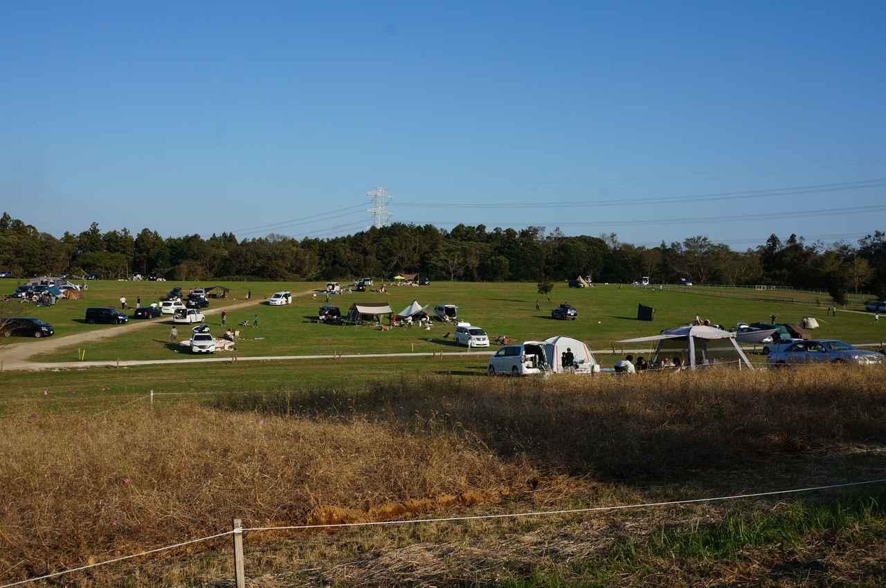 画像: 筆者撮影「11月上旬、日曜日の15時。テントはまばら」