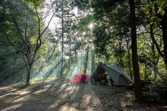 画像: 日販提供:森の生活の朝