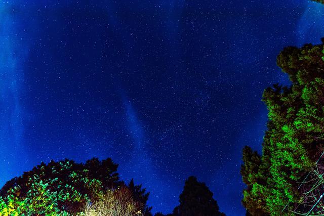 画像: 周囲に民家の明かりがないので、星がたくさん見えました。:父撮影