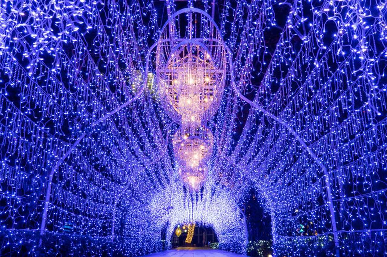 画像: 湘南の宝石(神奈川県)