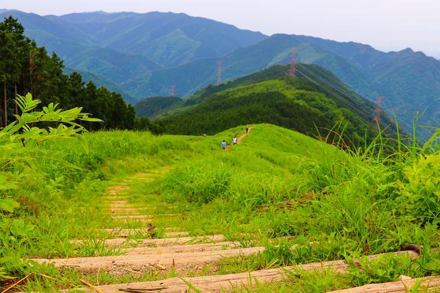 画像: (筆者撮影:山頂からみる岩湧山の稜線)