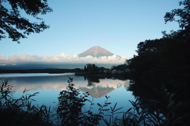画像: 筆者撮影 田貫湖キャンプ場から見た赤富士