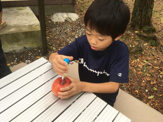 画像: 筆者撮影 りんごの芯抜きに集中する息子