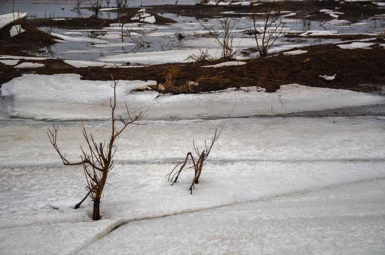 画像3: 雪遊びにおいて大切なのは雪質! 雪だるま・かまくら作りに向いているものとは?